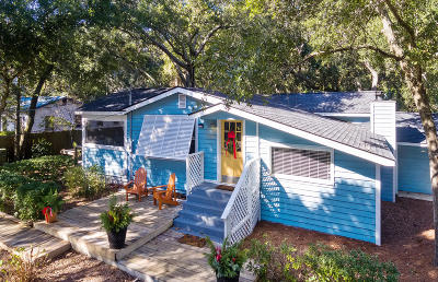 Folly Beach Single Family Home For Sale: 210 W Hudson Avenue