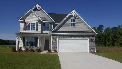Moncks Corner Single Family Home For Sale: 140 Lakelyn Road