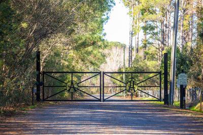 Awendaw, Wando, Cainhoy, Daniel Island, Isle Of Palms, Sullivans Island Residential Lots & Land For Sale: 1375 Tannanger Trail