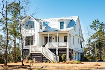 Awendaw, Wando, Cainhoy, Daniel Island, Isle Of Palms, Sullivans Island Single Family Home For Sale: 1461 Cat Island Parkway