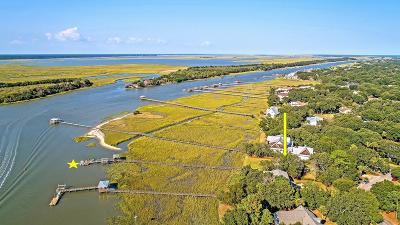 Awendaw, Wando, Cainhoy, Daniel Island, Isle Of Palms, Sullivans Island Single Family Home For Sale: 1903 Waterway Boulevard
