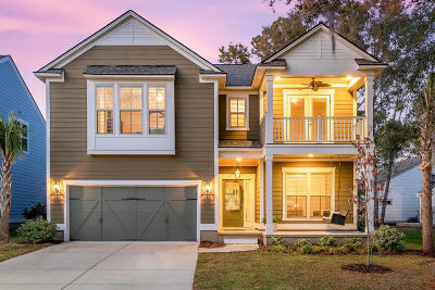 Charleston County Single Family Home Contingent: 1151 Bright Court