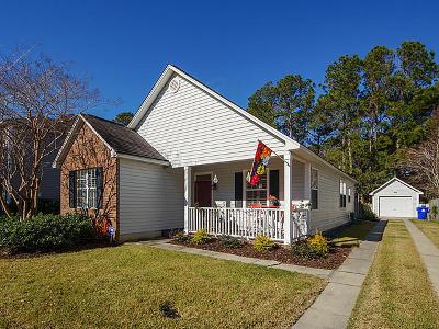 Mount Pleasant Single Family Home For Sale: 2341 Chadbury Lane