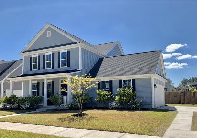 Johns Island Single Family Home For Sale: 2865 Ortega Drive
