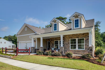 Single Family Home For Sale: 5067 Great Egret Road