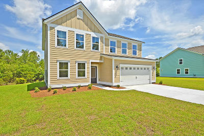 Charleston County Single Family Home For Sale: 5031 Great Egret Road