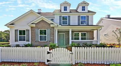 Mount Pleasant Single Family Home For Sale: 3052 Caspian Court
