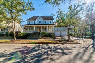 Single Family Home For Sale: 272 Beresford Creek Street