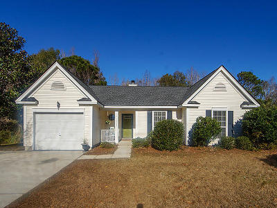 Mount Pleasant Single Family Home For Sale: 2544 Palmetto Hall Boulevard