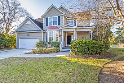 Mount Pleasant Single Family Home For Sale: 1397 Royston Road