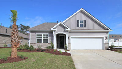 Summerville Single Family Home For Sale: 206 Rhodes Court