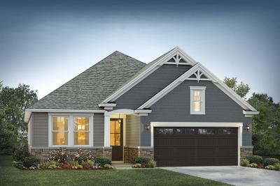 Single Family Home Contingent: 225 Whirlaway Drive