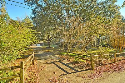 Mount Pleasant Single Family Home For Sale: 1432 Hale Road