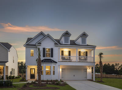 Single Family Home For Sale: 236 Firewheel Court