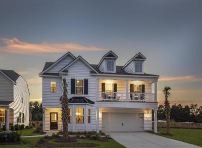 Summerville Single Family Home For Sale: 236 Firewheel Court