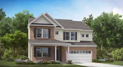 Summerville Single Family Home For Sale: 235 Firewheel Court