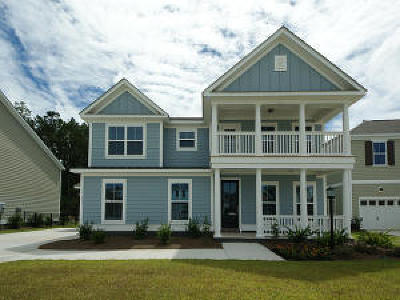 Moncks Corner Single Family Home For Sale: 581 Pendleton Drive