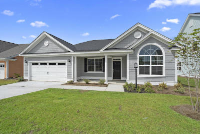 Moncks Corner Single Family Home For Sale: 569 Pendleton Drive