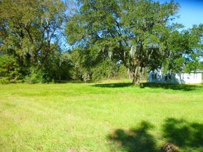Residential Lots & Land For Sale: 4182 Betsy Kerrison Parkway