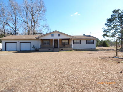 Berkeley County Single Family Home For Sale: 787 Root Branch Road