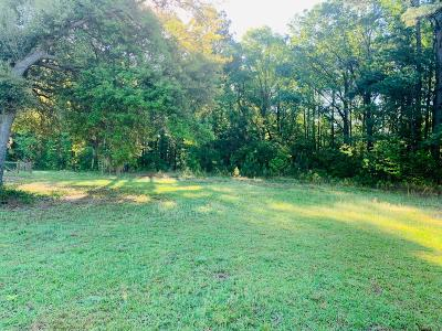 Awendaw Residential Lots & Land For Sale: 4895 N Highway 17