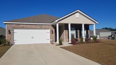 Berkeley County Single Family Home For Sale: 143 Firethorn Drive