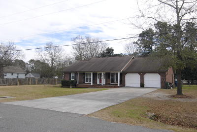Berkeley County Single Family Home For Sale: 113 Youth Boulevard
