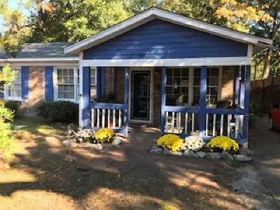 Mount Pleasant Single Family Home For Sale: 1158 S Shadow Drive