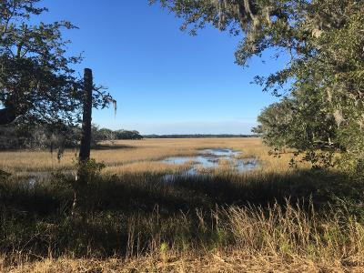 Edisto Island SC Residential Lots & Land For Sale: $106,000