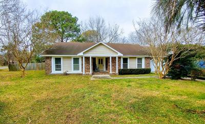 Charleston Single Family Home For Sale: 1041 Wellington Drive