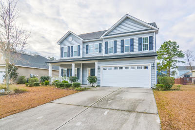 Moncks Corner Single Family Home For Sale: 137 Saluda Drive