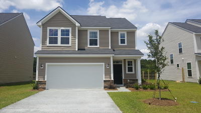 Moncks Corner Single Family Home For Sale: 117 Sugeree Drive