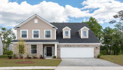Moncks Corner Single Family Home For Sale: 149 Sugeree Drive