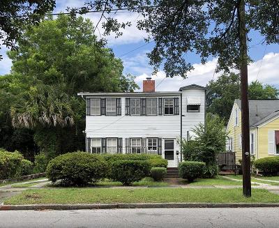 Charleston Multi Family Home For Sale: 101 Hester Street