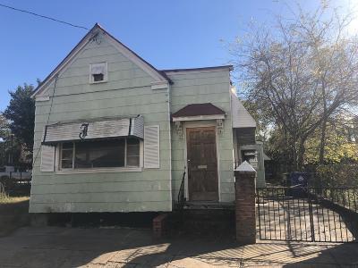 Charleston Single Family Home For Sale: 131 Bogard Street Street