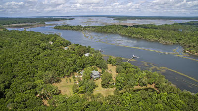 Wadmalaw Island Single Family Home For Sale: 4884 Bears Bluff Road