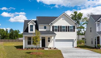 Moncks Corner Single Family Home For Sale: 153 Sugeree Drive
