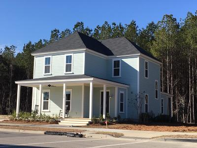 Summerville Single Family Home For Sale: 159 Dark Hollow Way