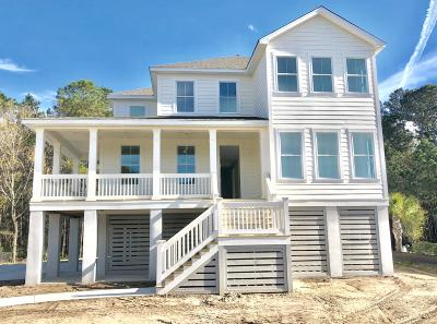 Berkeley County, Charleston County, Colleton County, Dorchester County Single Family Home For Sale: 1171 Rivershore Road