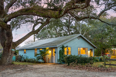 Charleston Single Family Home For Sale: 17 Sycamore Avenue