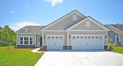 Mount Pleasant SC Single Family Home For Sale: $456,545