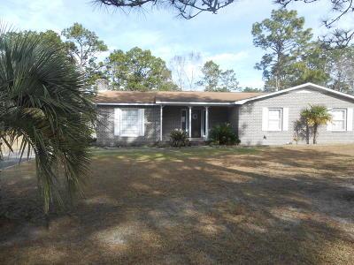 Walterboro Single Family Home For Sale: 132 Chamblee Road
