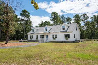 Awendaw Single Family Home For Sale: 7267 Doar Road