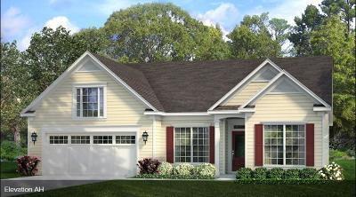 Summerville Single Family Home For Sale: 3064 Cross Vine Lane