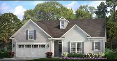 Summerville Single Family Home For Sale: 3104 Cross Vine Lane