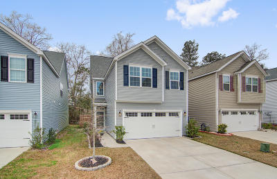 Single Family Home For Sale: 8954 Cat Tail Pond Road