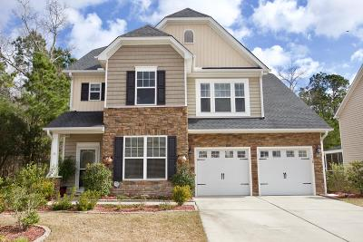 Moncks Corner Single Family Home For Sale: 118 Blackwater Way