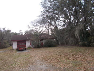 Johns Island Single Family Home For Sale: 3369 Maybank Highway