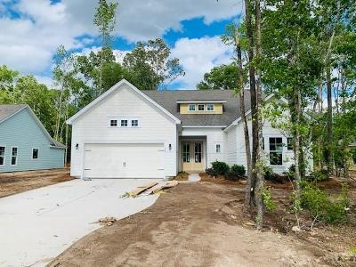 Berkeley County Single Family Home For Sale: 253 Camber Road