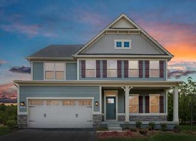 Summerville Single Family Home For Sale: 117 Corvus Street